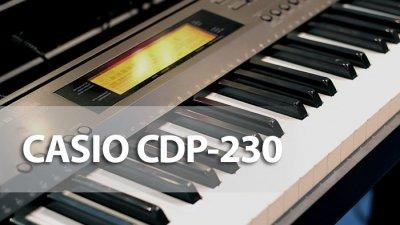 Картинки по запросу Casio CDP-230